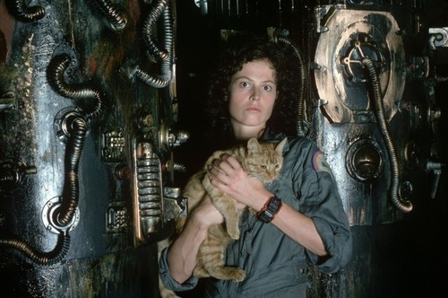 [Hot Toys] Alien: Ripley 1/6 Scale - Página 2 Jonesy