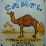 HORROR THURSDAY: CAMEL SPIDERS