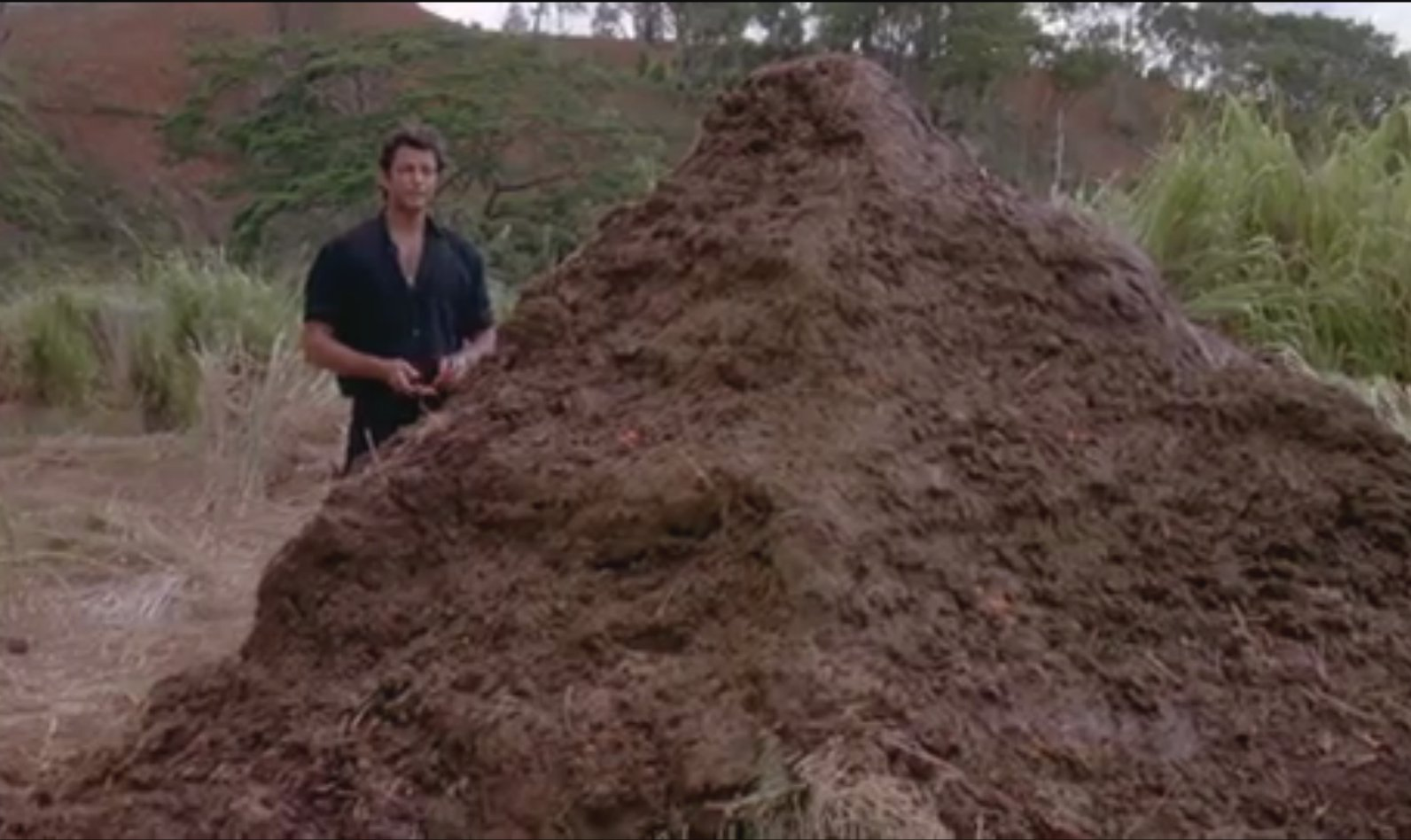 Jurassic Park - 9 - That is one big pile of shit