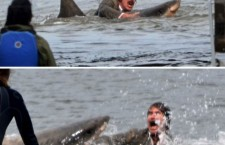 RON BURGUNDY VS. A SHARK
