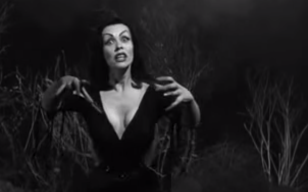 VINTAGE VAULT:  PLAN 9 FROM OUTER SPACE